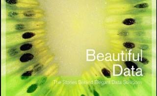 1321559884_beautifu_data