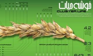 1323187418_clusterlife_s