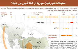 1364542035_syria-infographic_s