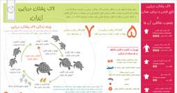 1368168221_tertels-in-iran_infographic_s