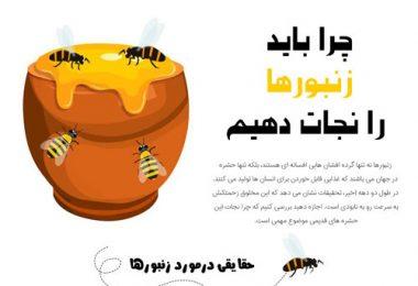 نجات زنبور