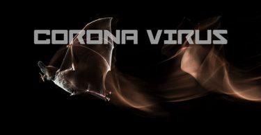 Coroa-Virus-Thumb